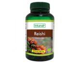 Reishi en cápsulas 90caps (extracto seco al 10%)