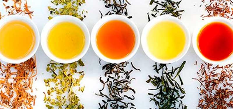Tipos de té: te verde, te rojo, te blanco, el té para adelgazar