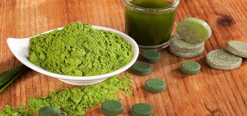 CHLORELLA, aportes nutricionales para el organismo