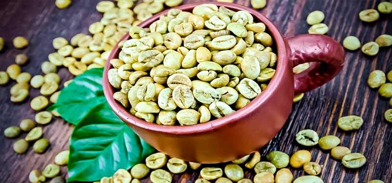 Café verde y sus beneficios para adelgazar