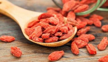 Goji, informamación sobre sus bayas de propiedades antioxidantes.