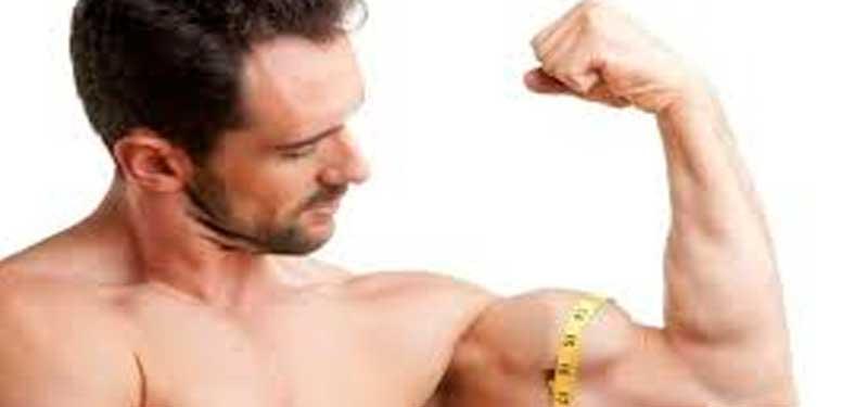 Aumentar la Masa Muscular, cómo hacerlo saludablemente